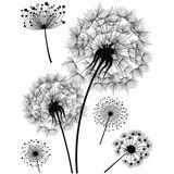 """Herma Fensterbild DECOR """"Pusteblume"""", DIN A4, schwarz/weiß"""