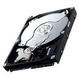 "1000GB Samsung SpinPoint F1 RAID HE103UJ 7200U/m 32MB 3,5"" (8,9cm) SATA II"