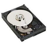 Dell 1TB 3.5ZOLL SATA 7.2K FESTPLATTE VERKABELT - KIT FUER POWEREDGE T110