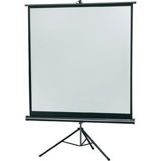 Celexon Economy tripod screen - Projektionsbildschirm mit Stativ - 265 cm ( 104 Zoll )