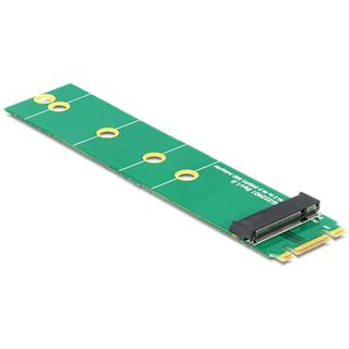 Delock M.2 Adapter für M.2 NGFF SSDs (62549)