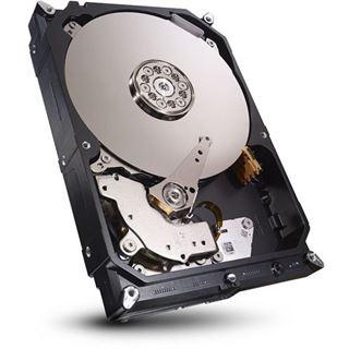 Seagate 3TB Ersatzlaufwerk für Seagate NAS (STDN3000400)