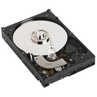 "2000GB Dell 400-AFPZ 400-AFPZ 3.5"" (8.9cm) SATA 3Gb/s"